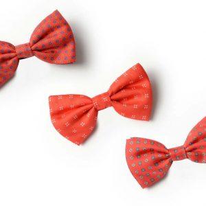Andrew's Ties - Papillon Fantasia - Fantasy Bow Tie - Fondo Rosso - Red Background - Presentazione - Presentation